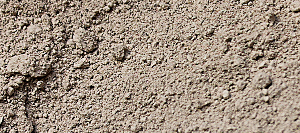 acheter terre diatomee 1200x533 - La Terre de diatomée, un remède naturel pour les poules