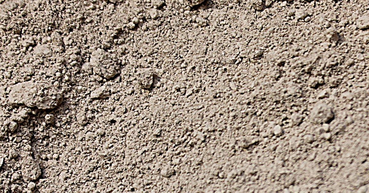 acheter terre diatomee - Les cendres : tous les bienfaits pour les poules