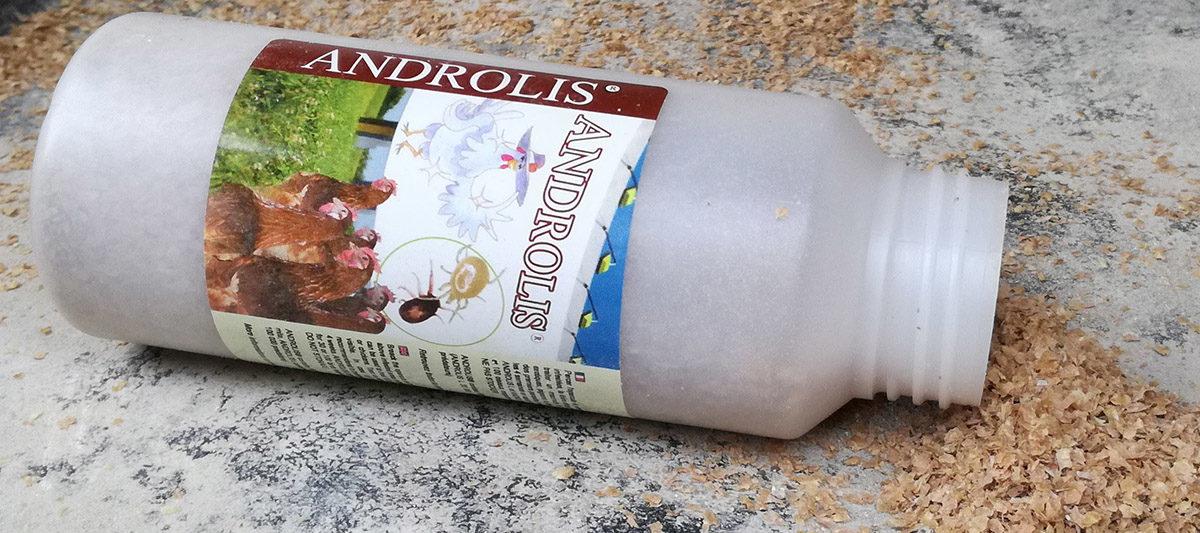 Les Androlis : des super héros pour manger les poux et sauver les poules !