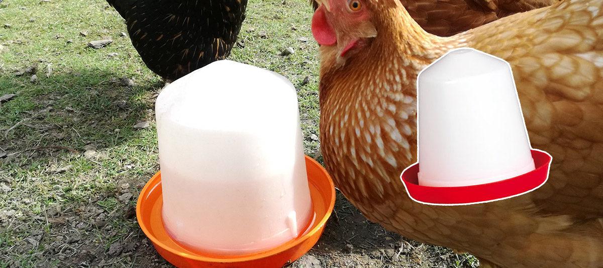 abreuvoir siphon 1200x533 - Abreuvoir à siphon pour les poules