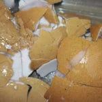 Donner les coquilles d'oeufs écrasées aux poules