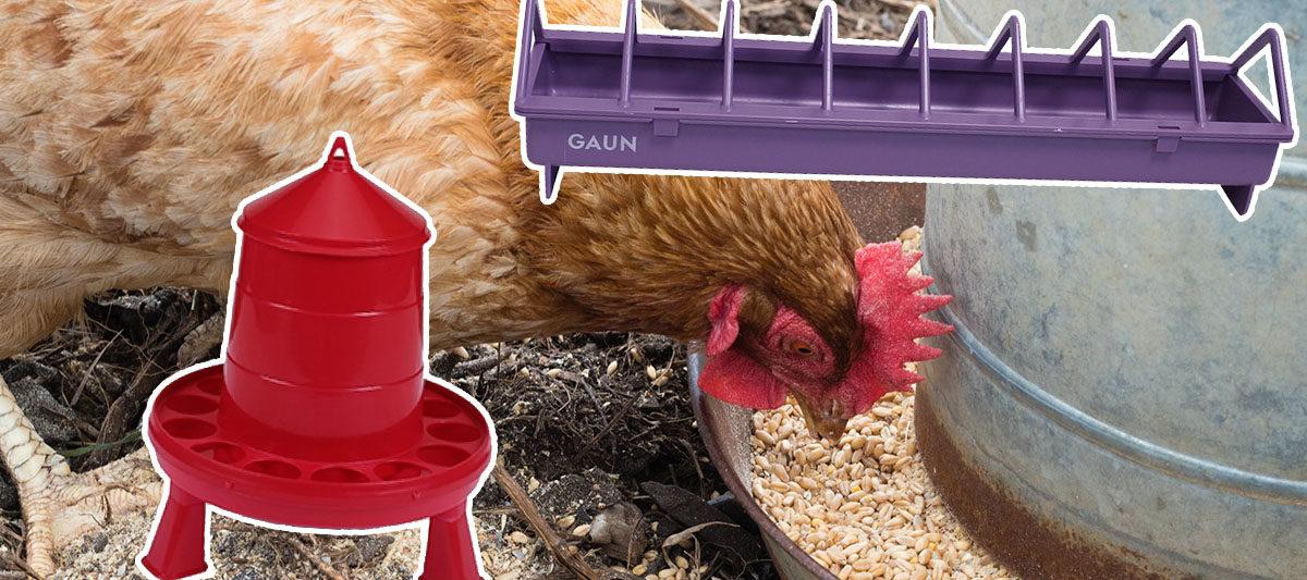 mangeoire poule 1200x533 - Les meilleures mangeoires pour poule