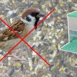 Mangeoire à poule anti-oiseau