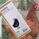 jouet omlet 80x80 - Oeuf qui a une odeur : pourquoi il sent mauvais ?