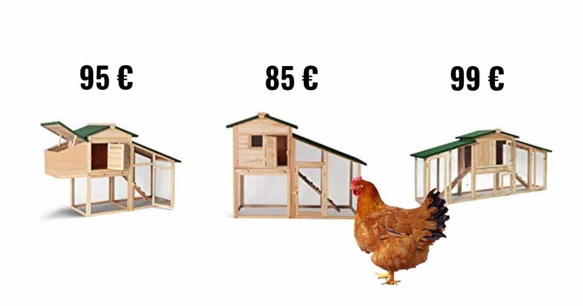 poulailler pas cher - Avoir 2 poules : le guide