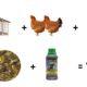 prix poules 80x80 - Poulailler pas cher : moins de 100 euros
