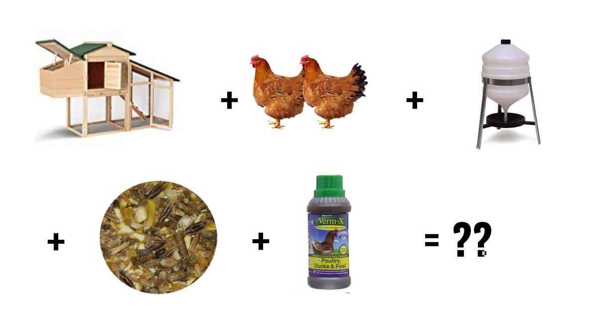 prix poules - Poulailler pas cher : moins de 100 euros