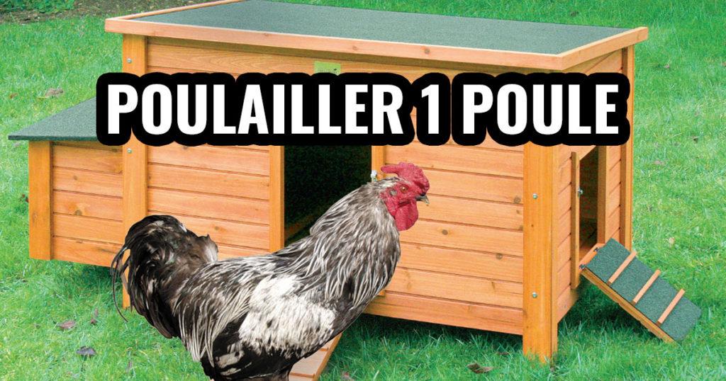 poulailler 1 poule