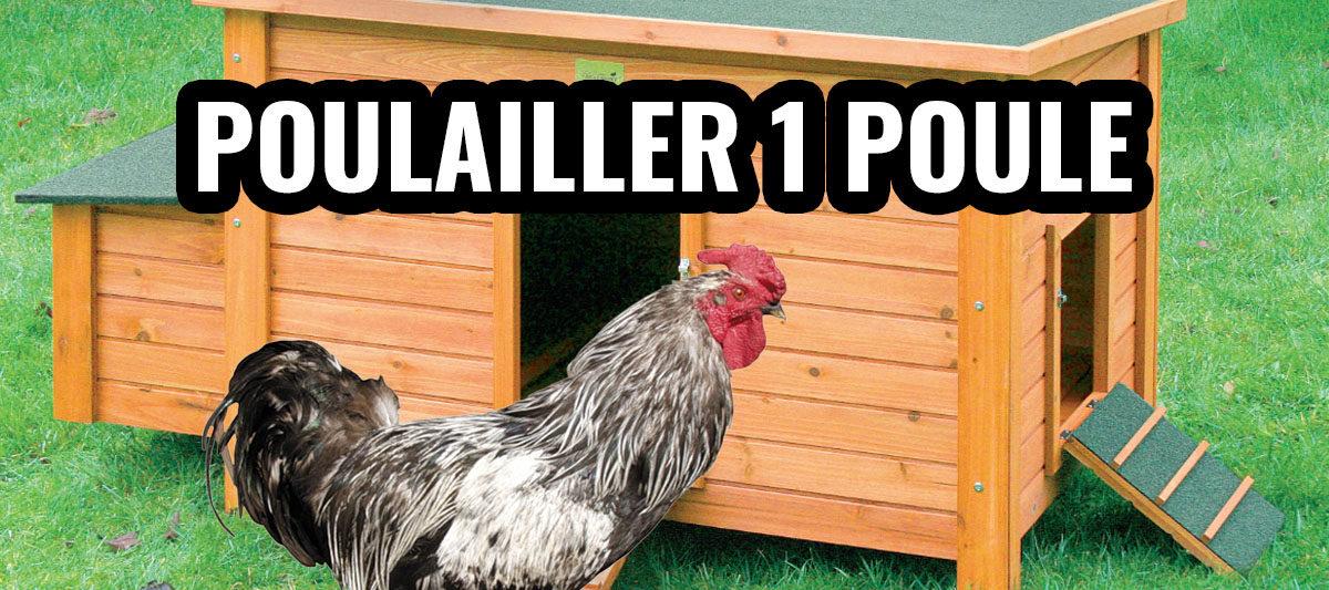 poulailler 1 poule 1200x533 - Mini poulailler pour une poule