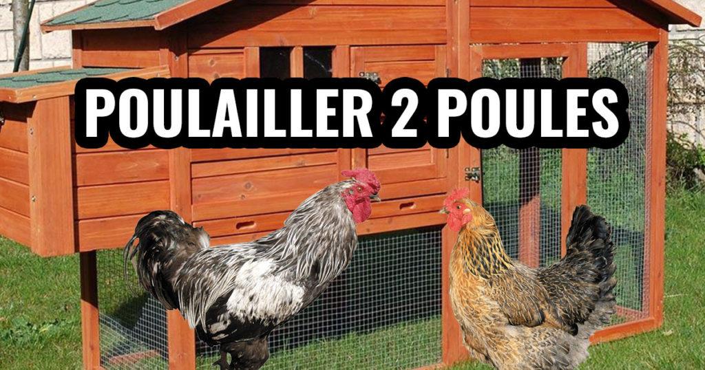 poulailler 2 poules 1