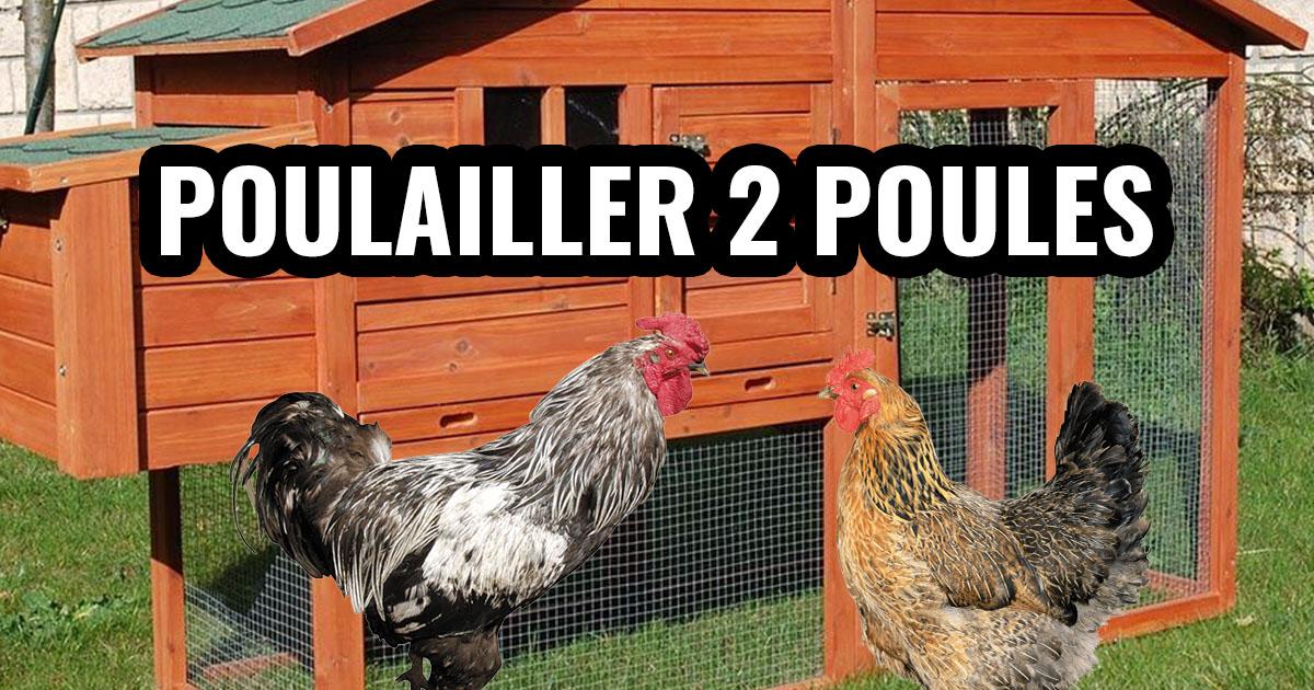 poulailler 2 poules 1 - Poulailler pour 2 poules