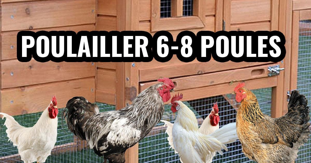 poulailler 6 8 poules - Poulailler pour 8 à 10 poules