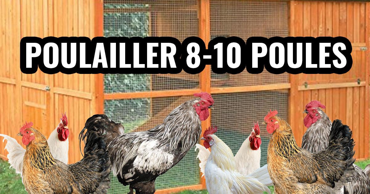 Poulailler pour 8 à 10 poules