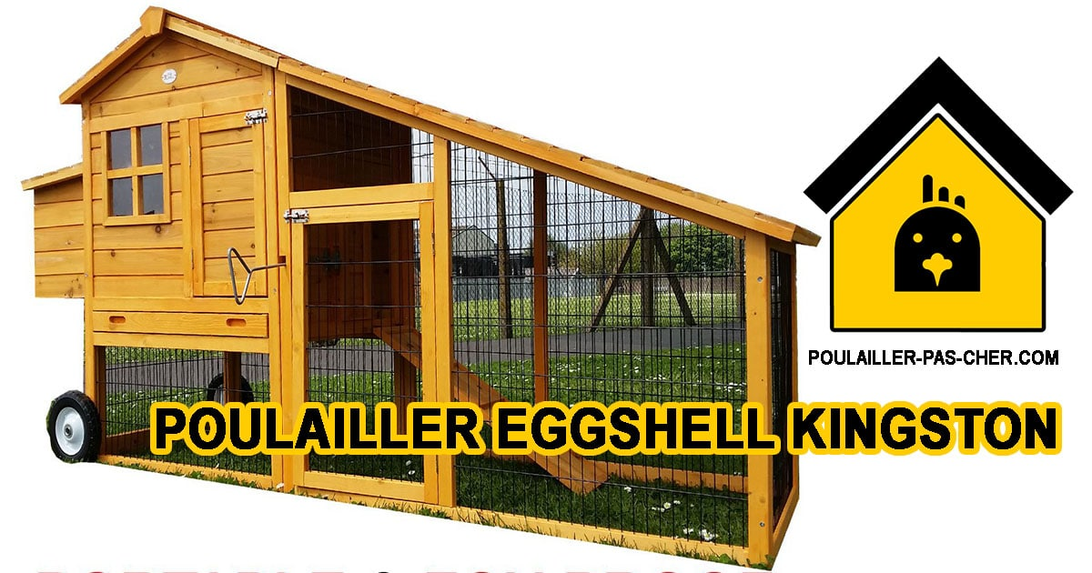 Eggshell Kingston portable - Le poulailler portable de Eggshell