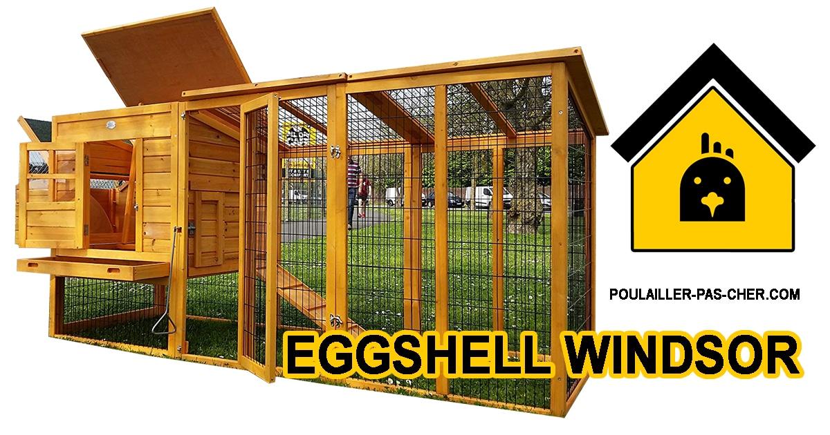 Eggshell Windsor Anti-renards