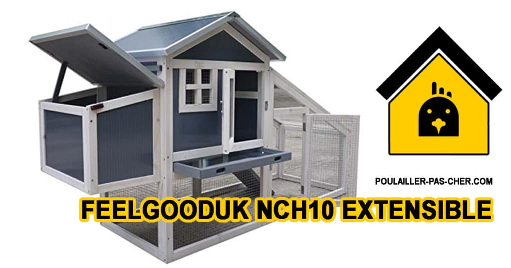 FeelGoodUK NCH10 extensible 1024x538 - Le poulailler extensible de FeelGoodUk