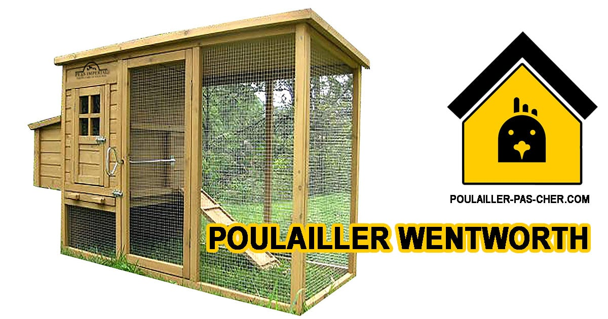Poulailler Wentworth – Chicken Coops