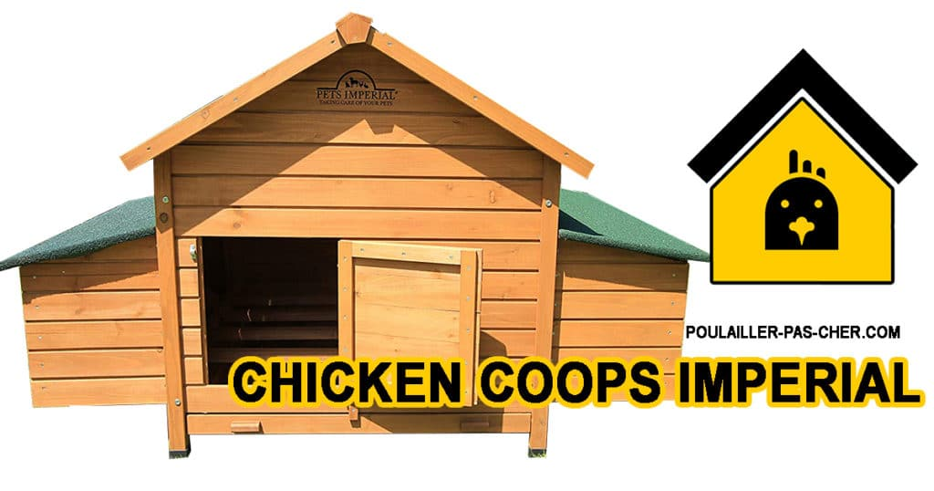 POULAILLER chicken coops imperial B00N500YOE