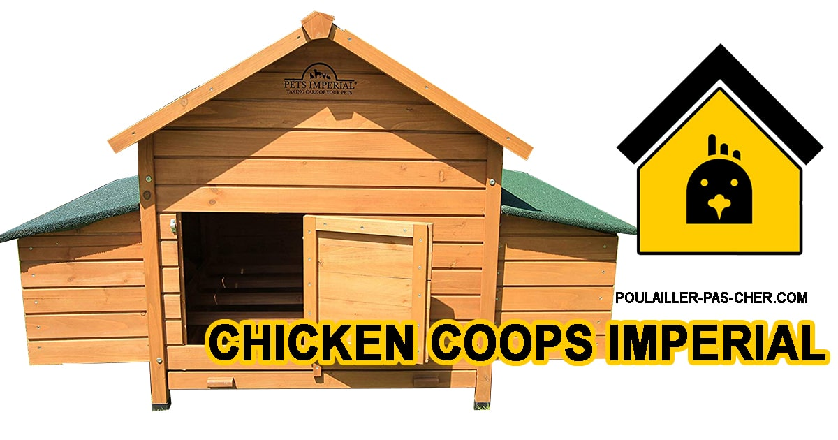 chicken coops imperial B00N500YOE
