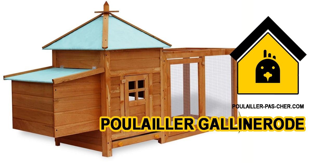 poulailler gallinerode - Le poulailler galinerode de Senluowx