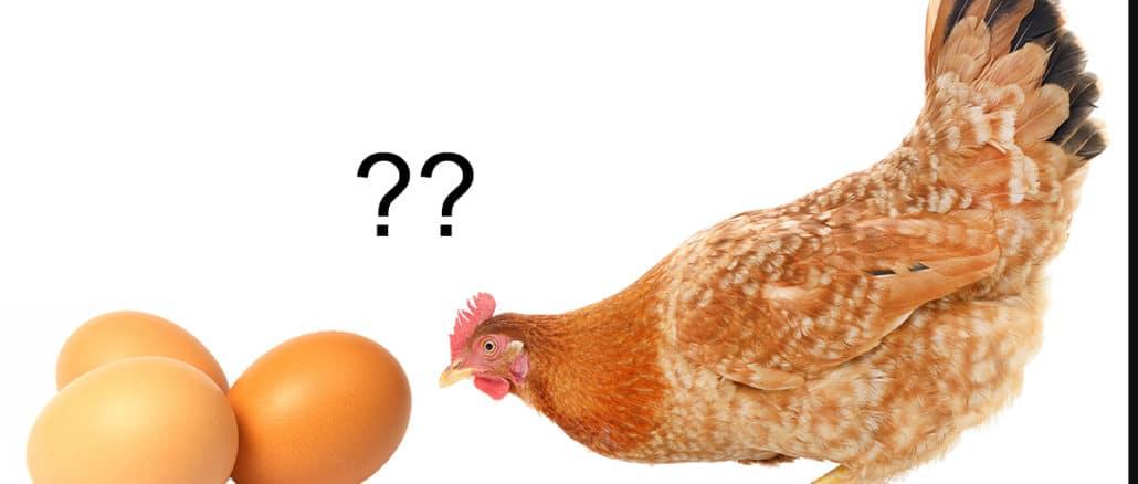 oeuf ou poule 1030x438 - L'oeuf ou la poule : qui est le premier ?