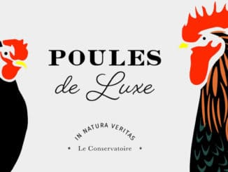 poulesdeluxe 326x245 - Qui veut s'associer à Poules de luxe ?