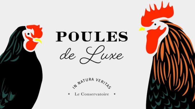 poulesdeluxe