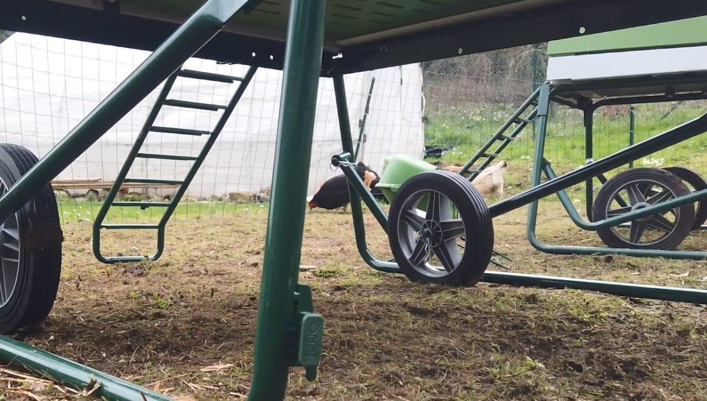 roue de poulailler