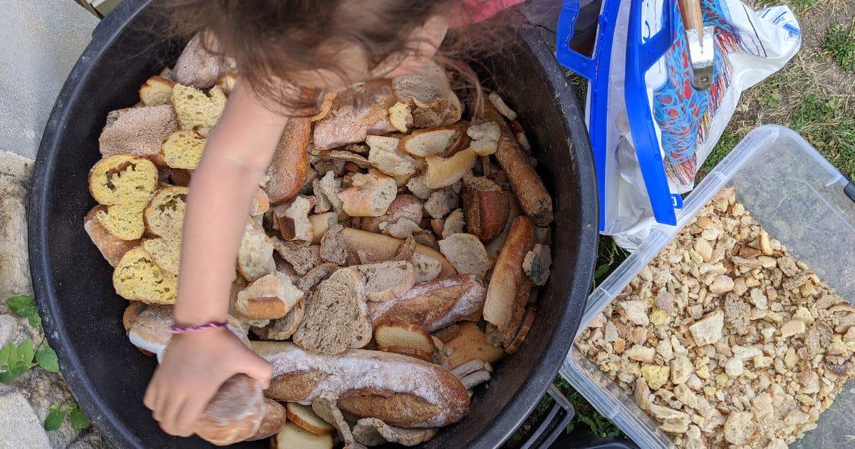 pain pour les poules